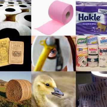 10 faktů o toaletním papíře
