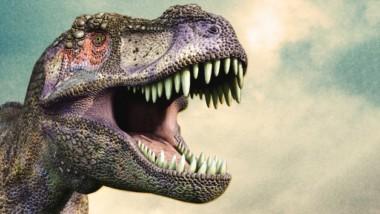 10 neuvěřitelných zajímavosti o prahistorických tvorech a dinosaurech